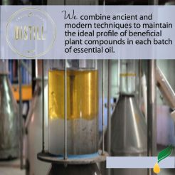 distill-graphic